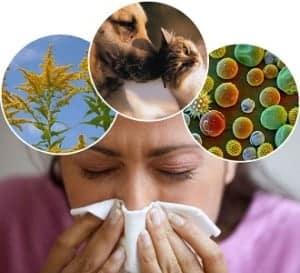 allergicheskij-bronxit1