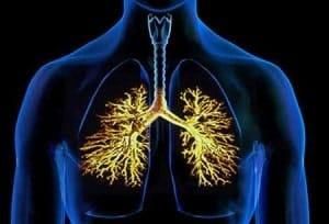 bronxit-kurilshhika1