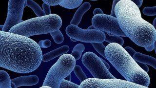 Что такое полипозный риносинусит и как его лечить